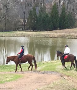 After Trauma: Who Am I? Reach to a Horse