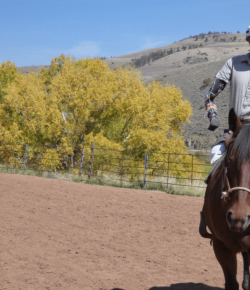 National Disability Independence Day: Equestrian Version