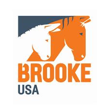 Standing Ovation by Ovation Riding: Brooke USA
