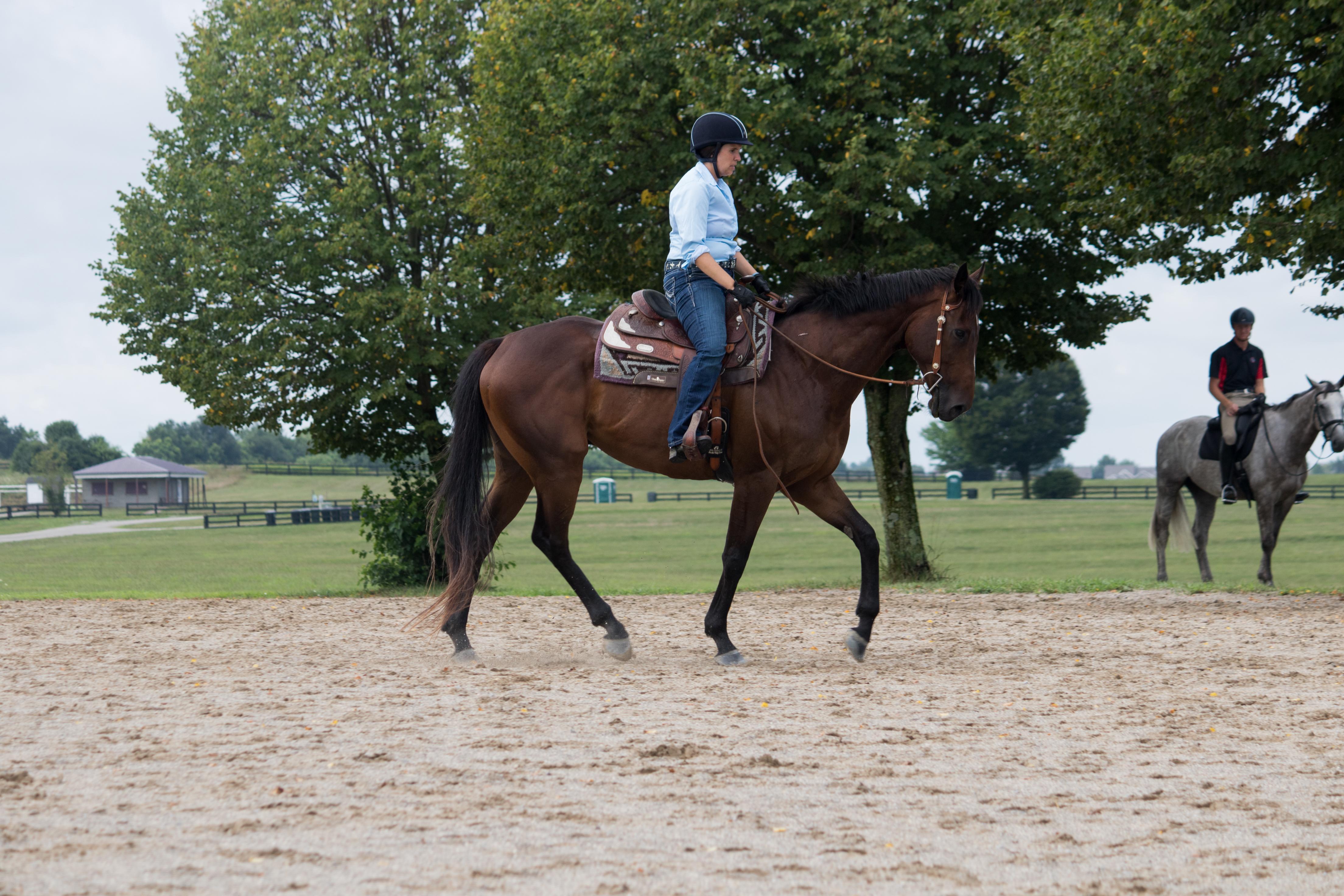 Adestramento ocidental: por que tentei (e adorei!) 2