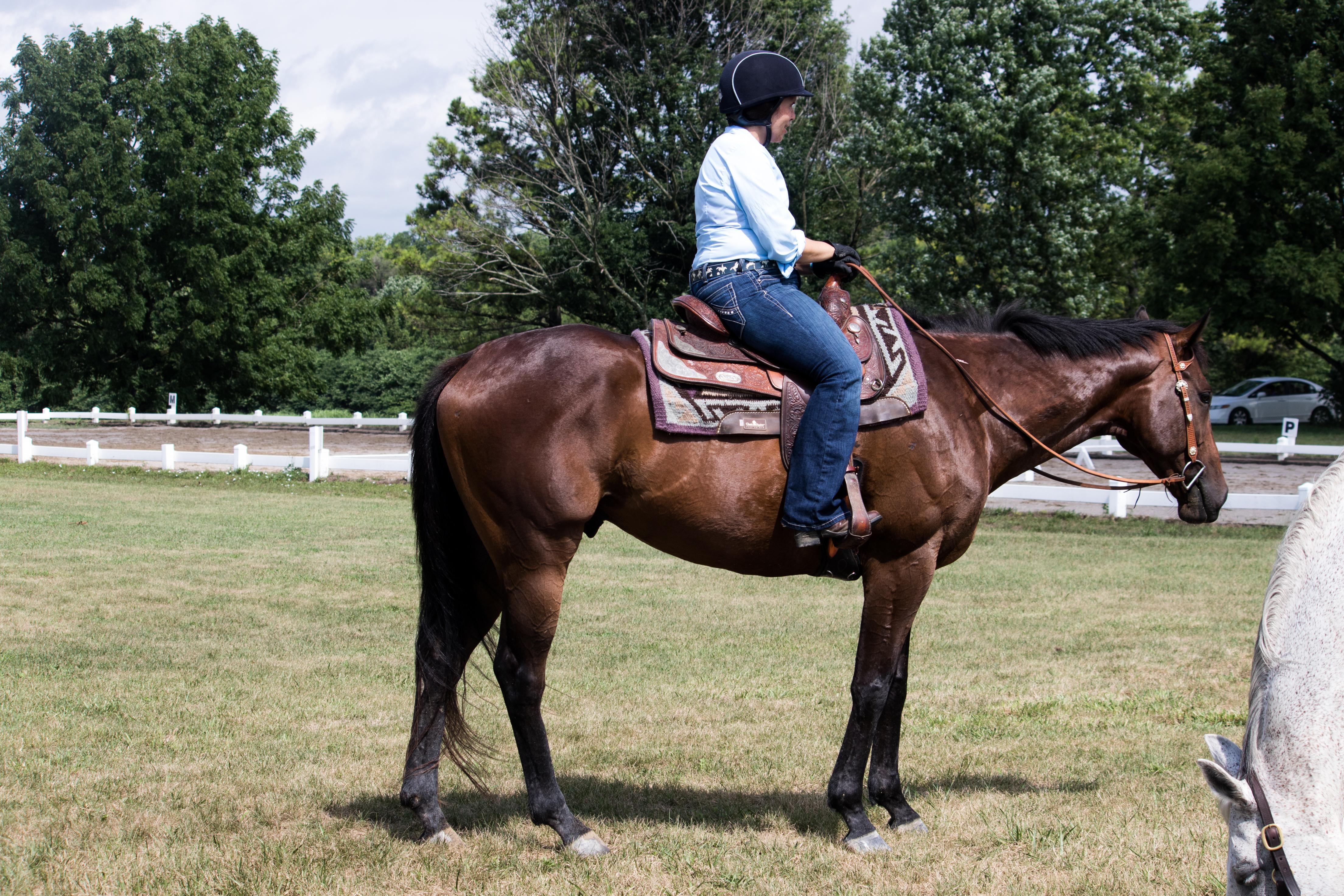 Adestramento ocidental: por que tentei (e adorei!) 3