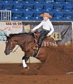 Carlee McCutcheon: Hunter, Jumper, AND Reining Skills All Pay Off in Adaptability