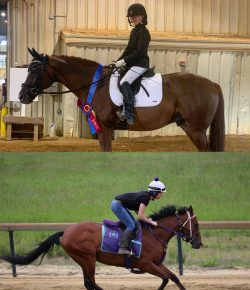 Thoroughbred Incentive Program August Youth Ambassadors