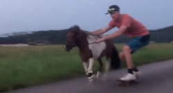 Thursday Video: Ponies and Skateboarding