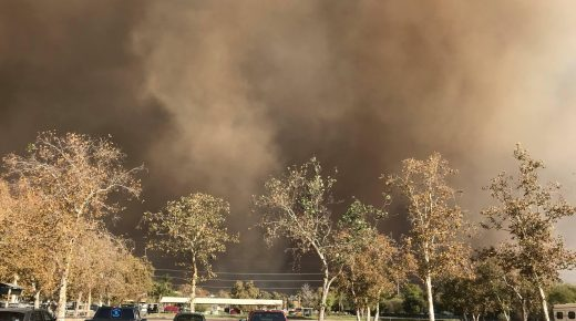 Horses, Fire and Evacuation in Los Angeles