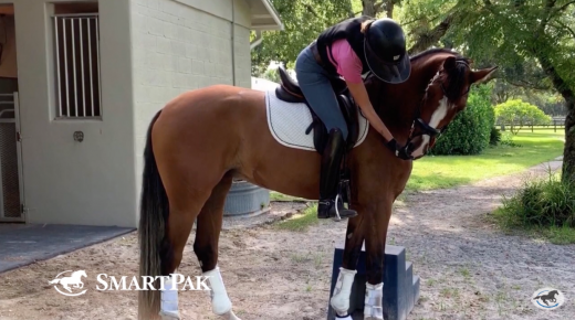 SmartPak Monday Morning Feed: Ask a Trainer — Mounting Safely