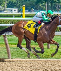 U.S. House Passes Anti-Doping Bill to Reform American Horse Racing