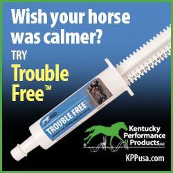 Produtos de desempenho de Kentucky: úlceras colônicas em cavalos 3