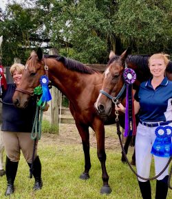 The Baby OTTB Goes To His First Horse Show: Libby & Spider