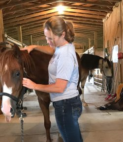 Horses Tell No Lies: 8 Observations of an Equine Body Worker