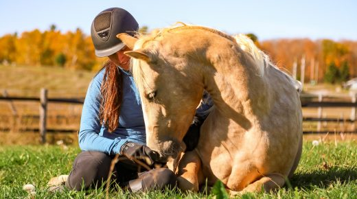 Horsemanship With Lindsey Partridge: Is My Horse Being Bad or Is It Hurting?