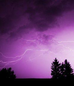 Halloween Short Story: A Race-Horse Called Lightning Bolt