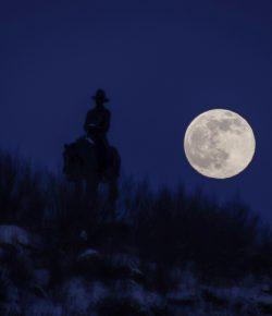 Halloween Short Story: The Night Rider