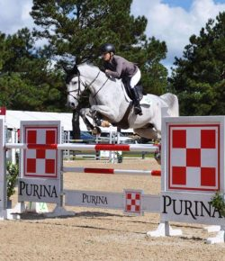 Who Jumped It Best? October at Bruce's Field – $5K Welcome Stake Edition