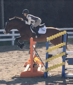 Best of JN: Horse Showing Is a Muscle