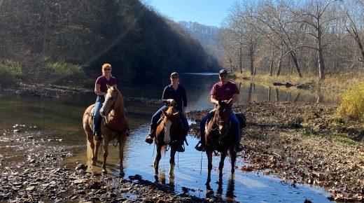 Hitting the Trails: Beaver Creek State Park, East Liverpool, Ohio