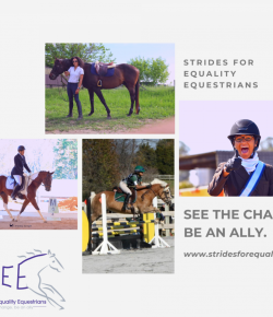 Strides for Equality Equestrians (SEE) to Promote Visible, Active Allyship for BIPOC Equestrians