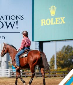 Applications Now Open For 2021 Retired Racehorse Project Thoroughbred Makeover
