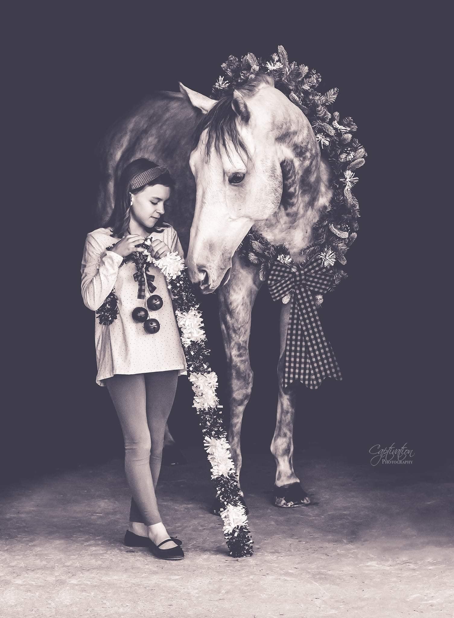Desafio fotográfico: Boas festas | HORSE NATION 2