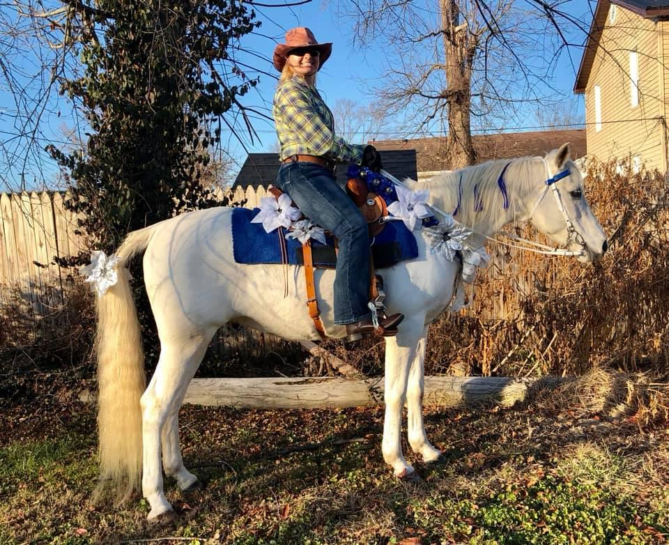 Desafio fotográfico: Boas festas | HORSE NATION 15