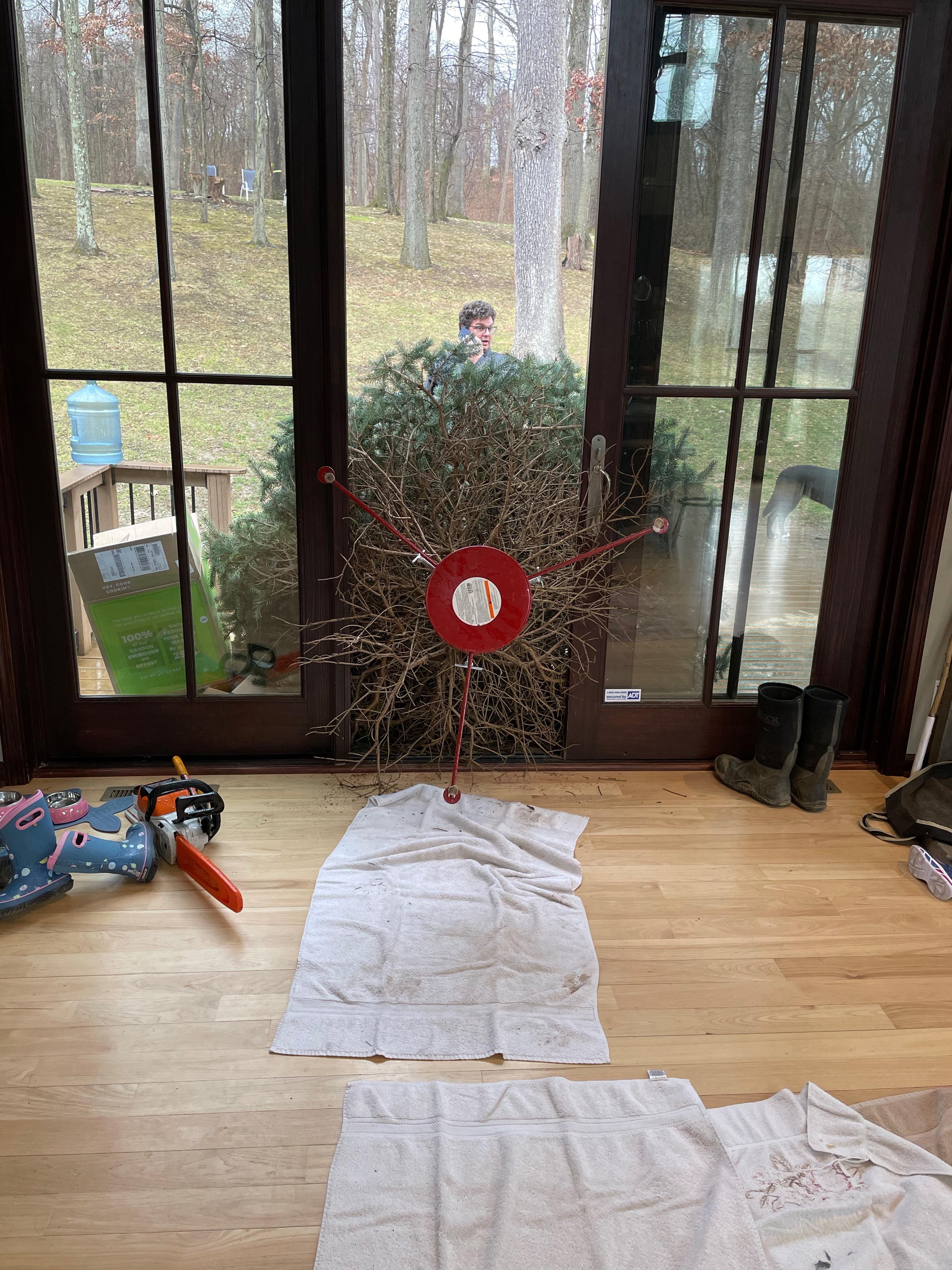 Um conto de duas árvores de Natal: uma metáfora para 2020 4