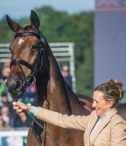 Best of JN: Two Bodies, One Heart — Horses and Your Heartbeat