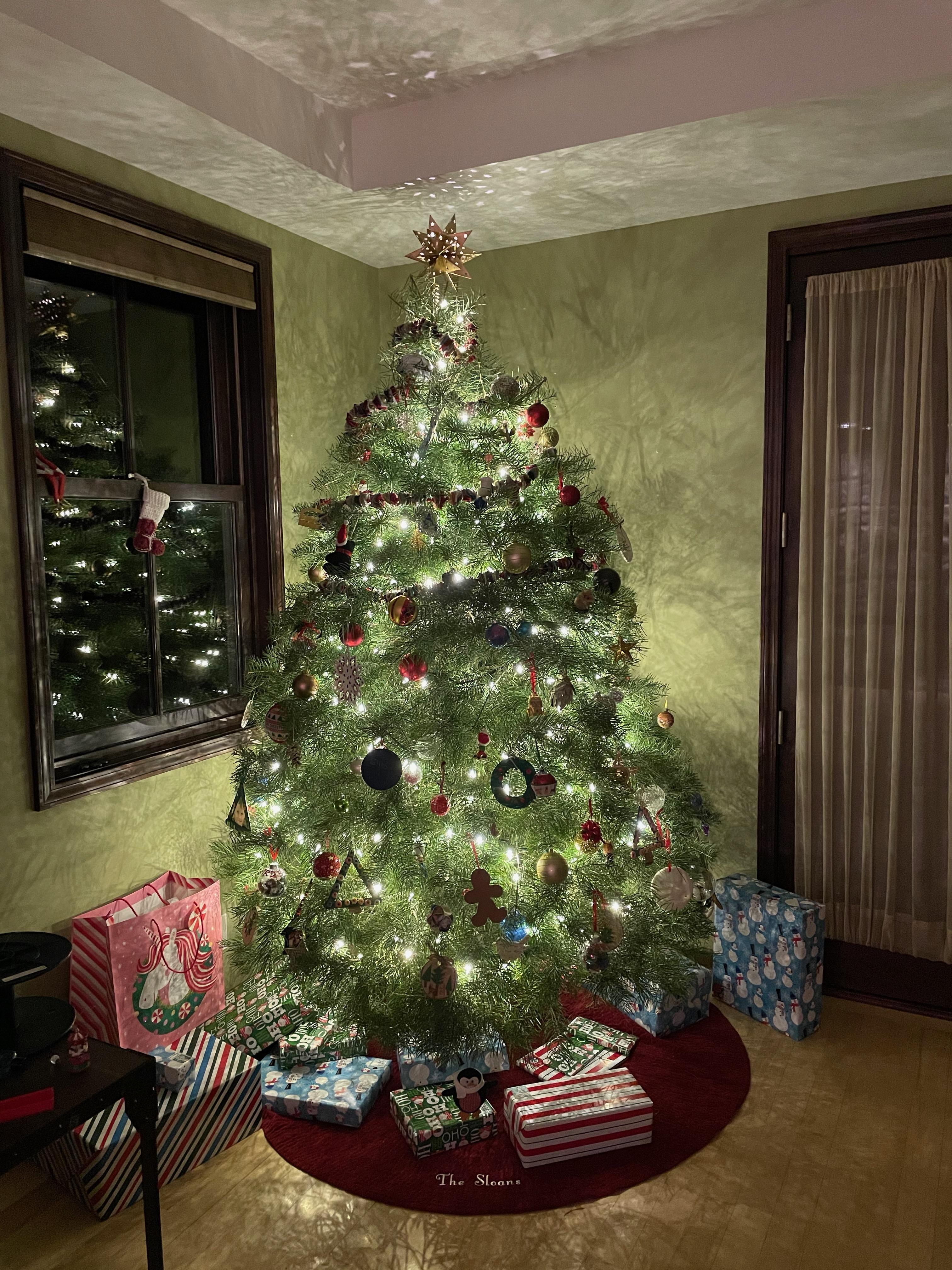Um conto de duas árvores de Natal: uma metáfora para 2020 6