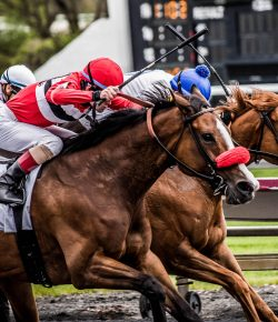 Congress Passes Historic Legislation To Protect Racehorses