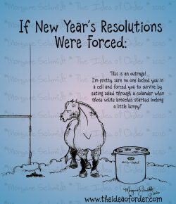 The Idea of Order: New Year's Resolutions we Make FOR Our Horses…