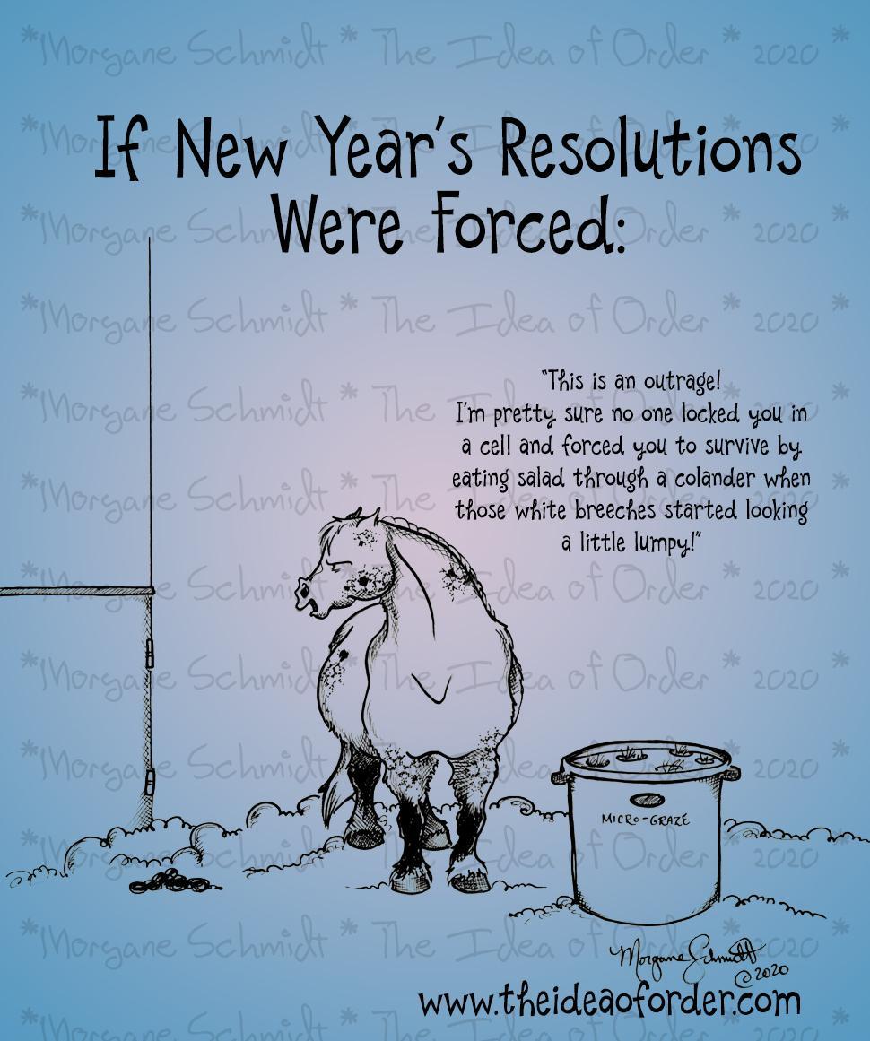 A ideia de ordem: resoluções de ano novo que fazemos para nossos cavalos ... 2