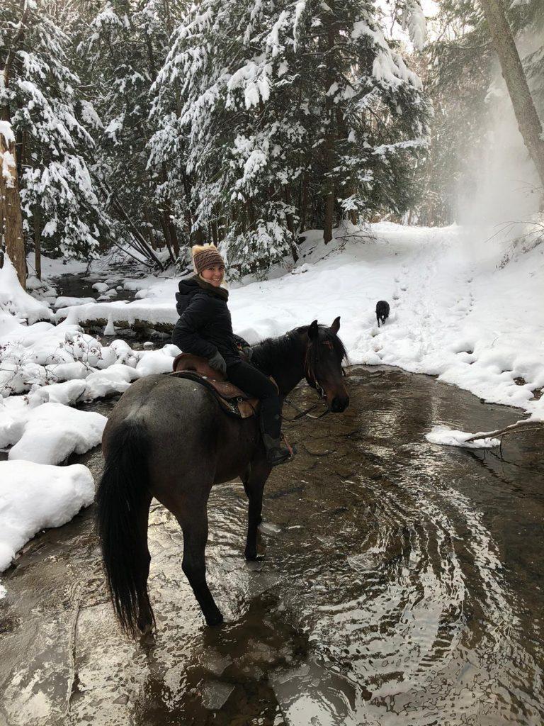 Um momento para refletir |  HORSE NATION 3