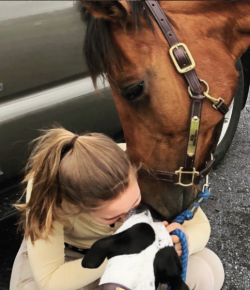 Best of JN: Keeping Compassion Central in Training Horses