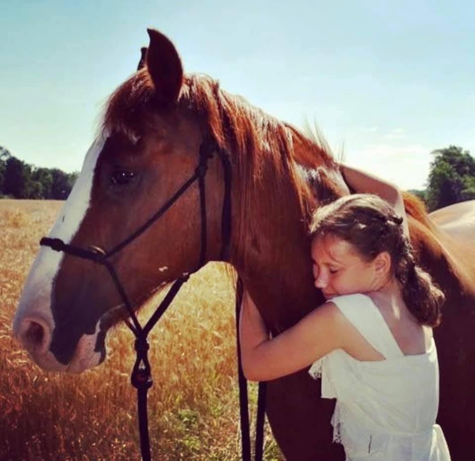 Desafio fotográfico do leitor: Cavalo Snuggles 5