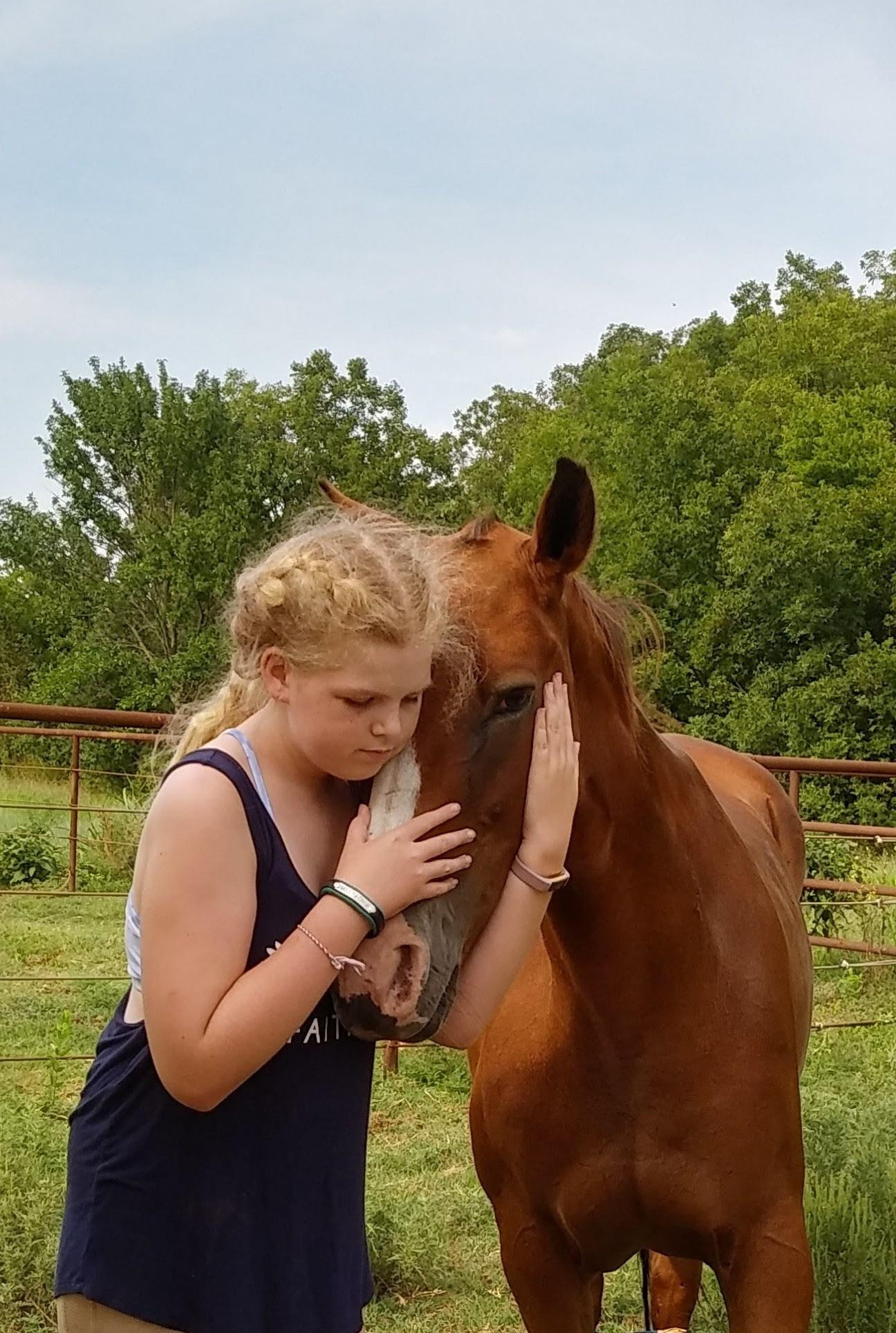 Desafio fotográfico do leitor: Cavalo Snuggles 9