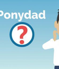 Ponydad: Color Index