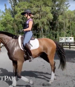 SmartPak Monday Morning Feed: Ask a Trainer — Sitting the Trot