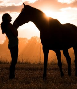 """""""Women of a Certain Age"""" Say Hello to Horse Ownership"""