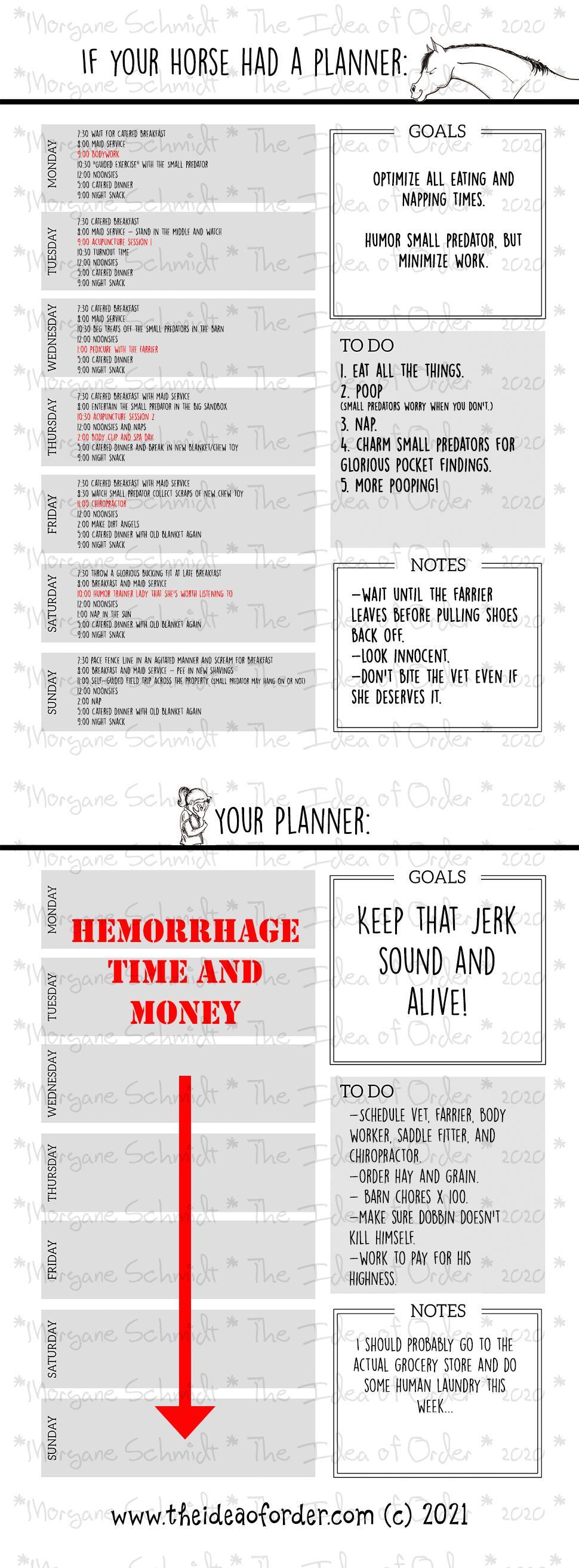 A ideia de ordem: se o seu cavalo tivesse uma agenda ... 2