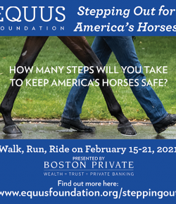 Stepping Out for America's Horses Campaign