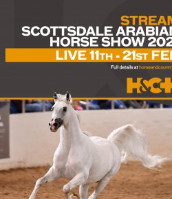 66th Annual Scottsdale Arabian Horse Show To Be Live-Streamed Exclusively on Horse & Country