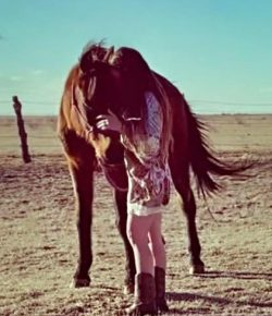 After Eight Long Years, Texas Woman Reunites with Her Missing Horse