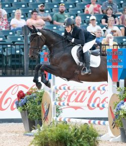 Best of JN: Making Good Memories – How To Develop Any Horse's Confidence
