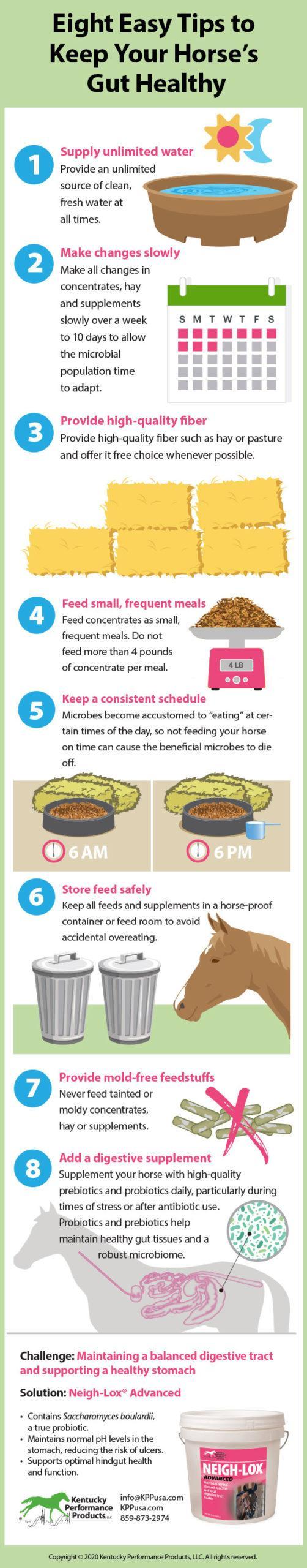 Produtos de desempenho de Kentucky: 8 dicas fáceis para manter o intestino do seu cavalo saudável 2