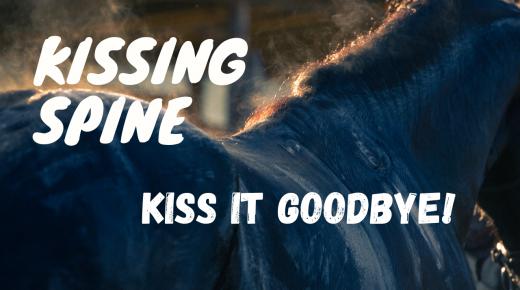 Best of EN: Kissing Spines — Kiss It Goodbye!