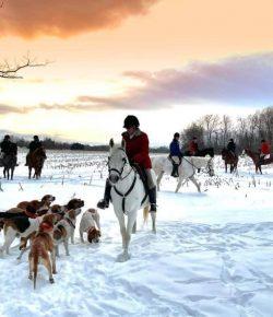 Reader Photo Challenge: Inspirational Horsewomen