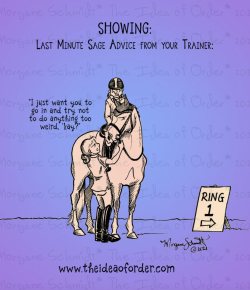 The Idea of Order: Last Minute Advice for the Show Ring…