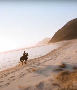 Ecovet Presents Mind Your Melon: Beach Ride