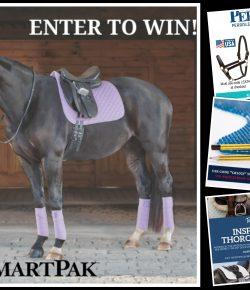 Outfit Your Horse: My Top 4 Virtual Vendor Village Deals for Thursday