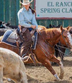 SmartPak Monday Morning Feed: Why I Ride Cutting Horses