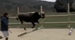 Thursday Video: Ground Poles